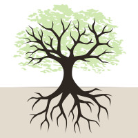 tree-and-roots-illustration